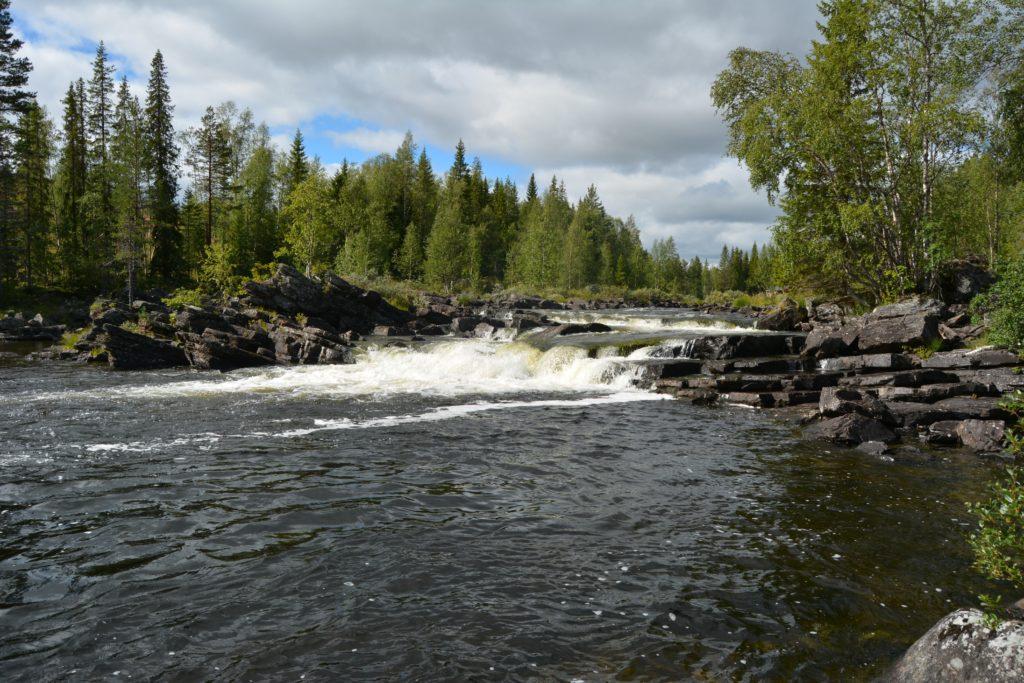 lappland pro natur pêche de la truite