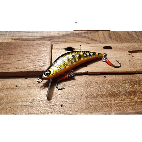 poisson nageur top truite