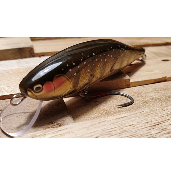 poisson nageur artisanal grosses truites de rivières