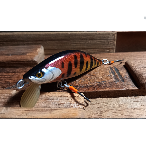 poisson nageur pour pêcher les grosses truites